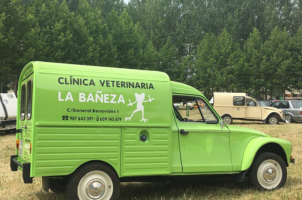 Servicio a domicilio | Clínica Veterinaria La Bañeza